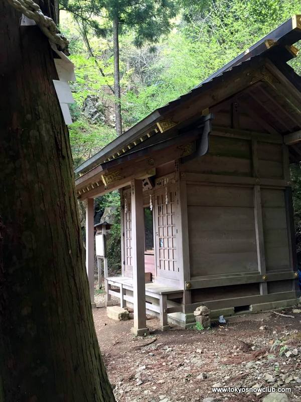 Mt Oyama Spring Hiking