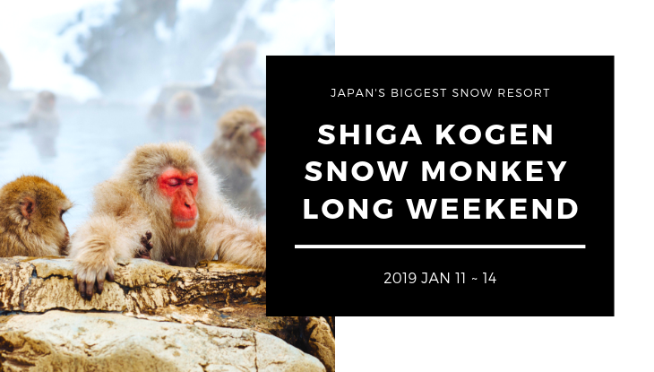 2019 SHIGA KOGEN SNOW MONKEY POWDER WEEKEND